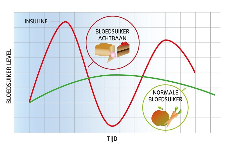 Een stabiele bloedsuikerspiegel – hoe belangrijk is dat eigenlijk?
